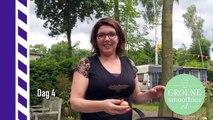 """4 - Groene smoothie """" De Afslankswitch """" van Marjolijn- Vlog 4 Cato-Margo Wijn die geen wijn is."""
