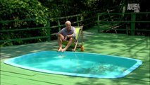 River Monsters: Bathing with Piranhas [HD]