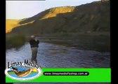 Pesca con Mosca en Piedra del Aguila MARRON GIGANTE