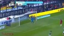 Raul Jimenez Gol Chilena - Narraciones - Seleccion Mexicana - Mexico vs Holanda Brasil 2014