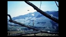 Billy Meier ★ Tape 14 UFO Pleiadian Semjase Beamship Video Photos - Billy Meier Contact Notes 5