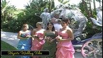 Disneyland Wedding Videographer Sample Videography Video