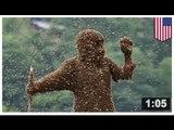 LES ABEILLES (PAS LES OISEAUX): Un homme se fait tuer par plusieurs centaines de milliers d'abeilles