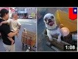 IDÉES RECETTE: Un ragoût de Chihuahua, ça se cuisine comment?