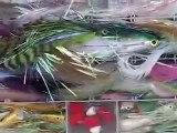 graphic saltwater flyfishing