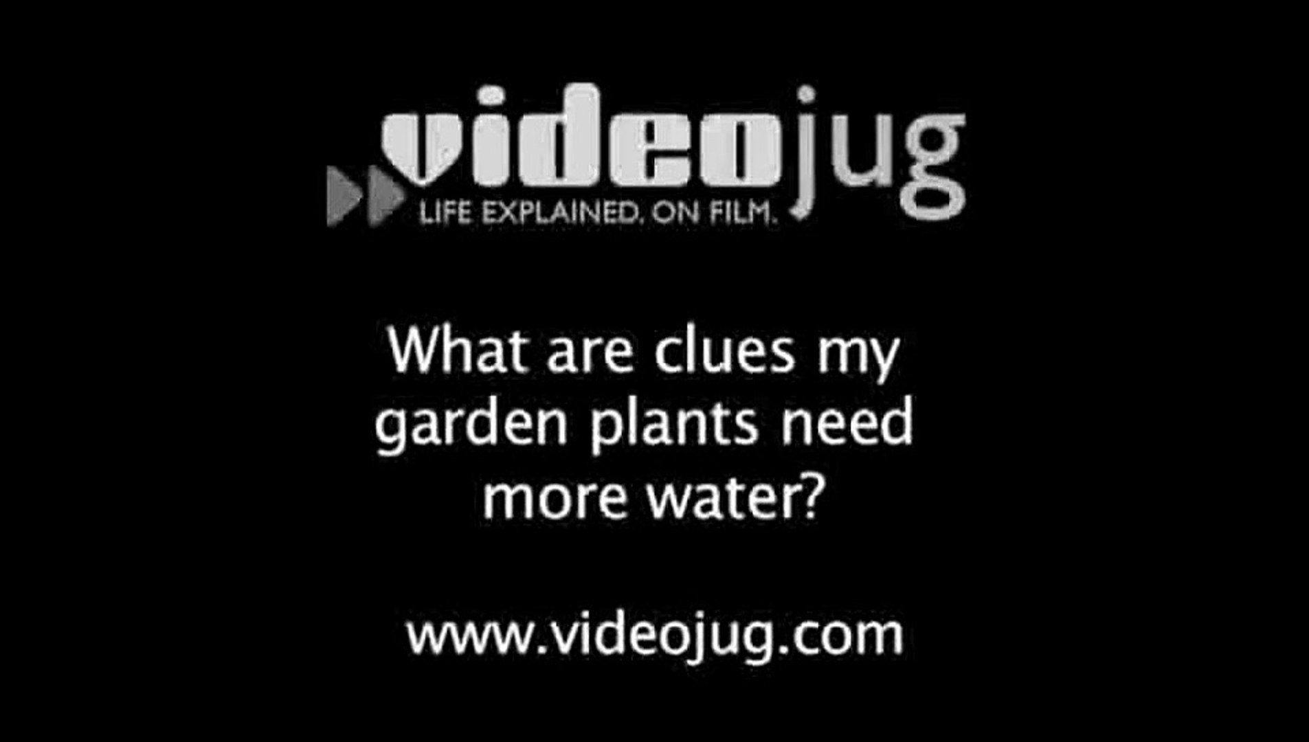 What are clues my garden plants need more water?: How To Know If Your Garden Plants Need More Water
