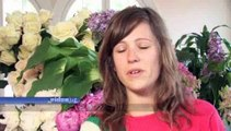 How can I tell if a florist is good or not?: How To Tell If A Florist Is Good Or Not