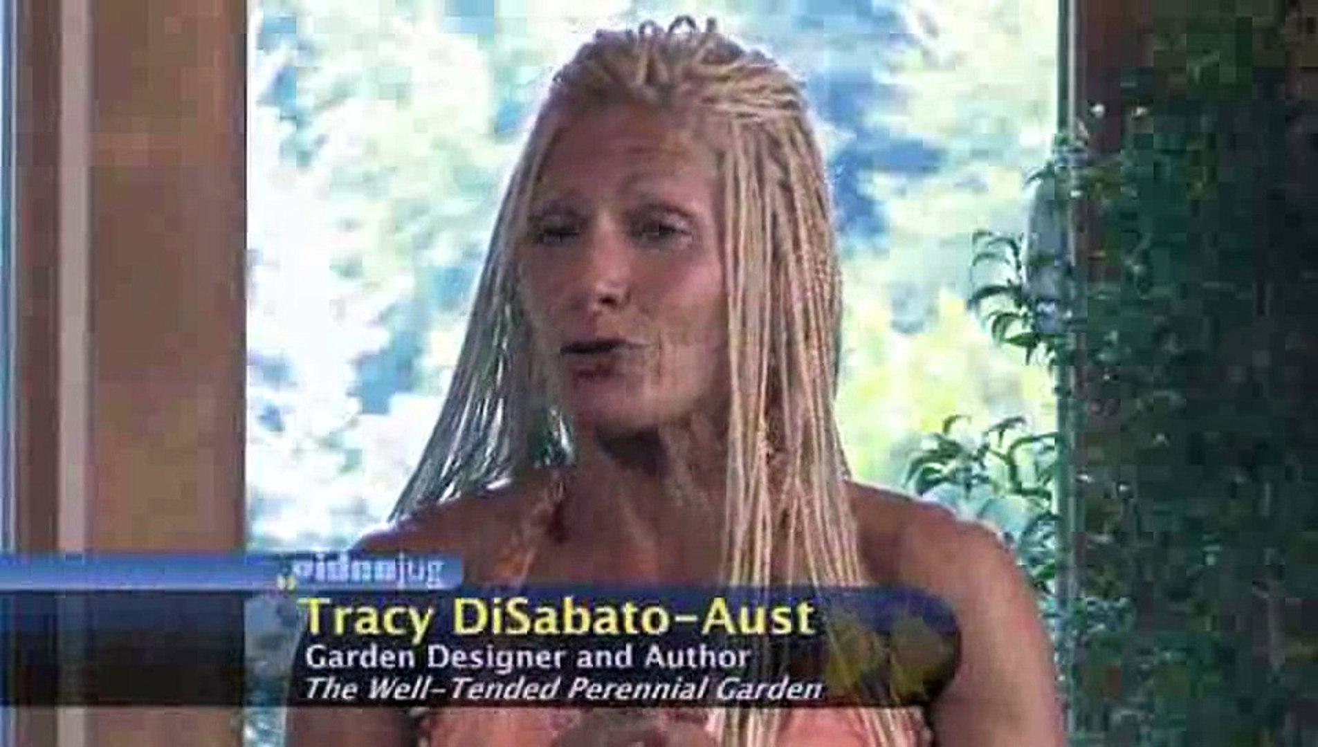 What factors will determine my garden design?: Garden Design