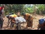 Le projet forestier Biochar, République Démocratique du Congo