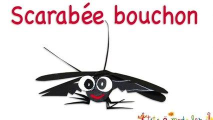 scarabee en bouchon