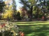 Zéro pesticide en ville : la gestion durable des espaces verts à Grenoble
