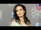 Angelina Jolie surgery: Fearing ovarian cancer, actress removes her fallopian tubes and ovaries