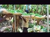 Global.Fair - Fairtrade verbindet Menschen