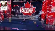 Canada Got Talent dog Funny animal video clips and pranks, GAGS just for laughs!hd