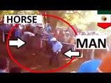 Straszna śmierć: koń wygrywa wyścig, mężczyzna wygrywa Nagrodę Darwina