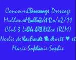Poney ♠ 20/02/11 - Concours à Mulhouse (Dressage)