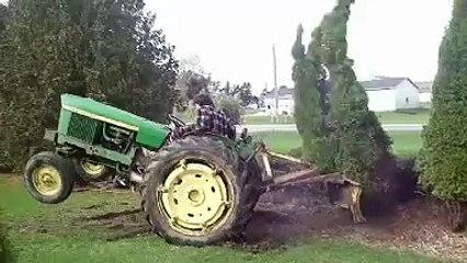 Traktörle hunharca ağaç sökmek