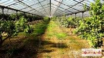 Finaliste Agriculteur Talents Gourmands Crédit Agricole Provence Côtes d'Azur 2014