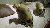 Les plus grands crânes allongés du monde ? Musée d'Ica, Pérou, par Brien Foerster (VOSTFR)