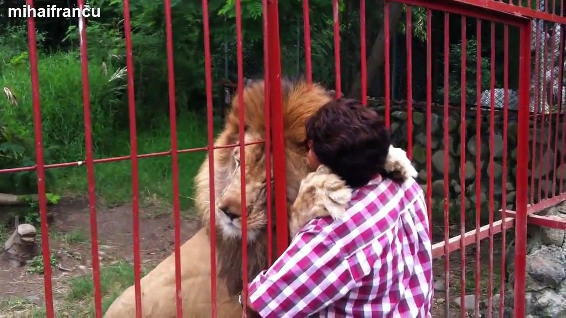 Cute Animal Videos Compilation 2015