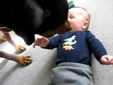 Rottweiler causa ataque de risos no bebê