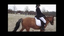 Poney ♠ 03/03/13 - Concours à Mulhouse (Dressage)