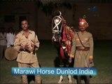 DANCING MARWARI HORSE INDIA FILMED BY HORSE RUSH TV AUSTRALIA 2005