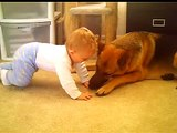 German Shepherd loving a baby, Shelby 4 years old, Joshua 9 Months old 11-16-07