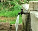 if He can we cant we,,,Save Water Campaign
