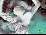 Techno Trance Electro 009 Sound System