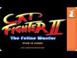 Street Fighter Parody - Cat Fighter