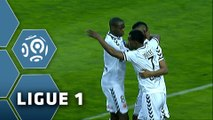But David NGOG (5ème) / SC Bastia - Stade de Reims (1-2) - (SCB - SdR) / 2014-15