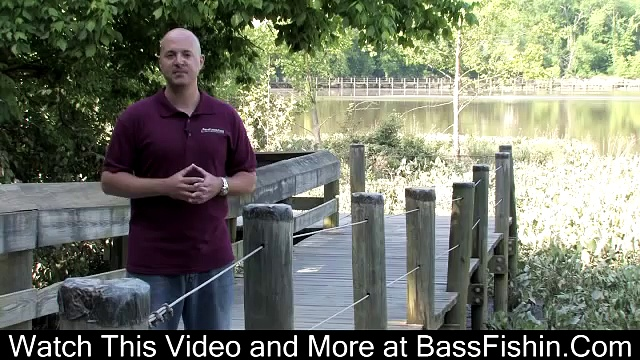 Fall Bass Fishing Tips