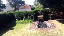 Mon bassin de jardin avec poisson [HD]