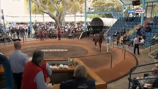 Horse Racing Time: Longines Queen Elisabeth Stakes