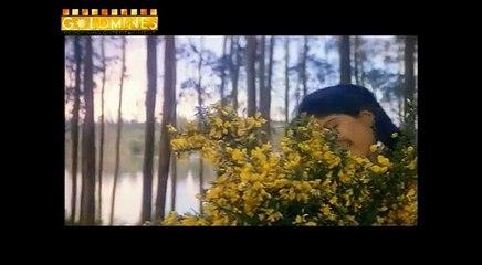 Sangram 1993   Full Movie   Ajay Devgan, Ayesha Jhulka, Karishma Kapoor, Amrish Puri
