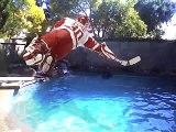 Chris Osgood sure can Dive! Dive! Dive!