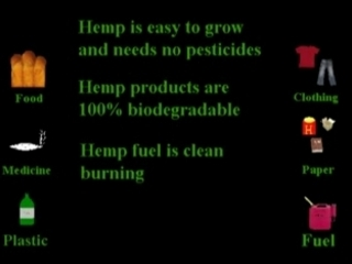 Hemp A Solution for Our World