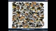 Artensoft Photo Collage Maker Keygen - Risk Free Download