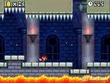 Newlaunches.com - Mario Bros on Nintendo DS Lite