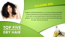 Top 5 Home Remedies For Dry Hair   Best Health and Beauty Tips   Lifestyle