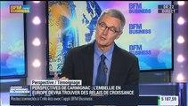 Marchés européens: Le QE, une machine à encourager la spéculation?: Didier Saint-Georges - 21/04