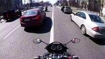 Des motards aident un chien sur une route
