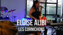 Eloise ALIBI : Les Cornichons