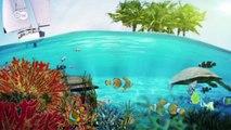 Die letzten ihrer Art - Seekühe auf den Philippinen | Global 3000