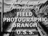 Derailing a Steam Locomotive - US Military Railroad Sabotage Testing on Trains WW2 1944