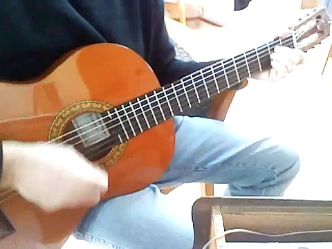 La princesse et le croque-notes – reprise (guitar cover)