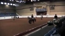 **SOLD** The Exception AQHA/APHA(SPB) 2012 APHA 2x Res World Champion **Reasonably priced!**