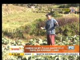 Freezing weather in Mt. Pulag draws tourists