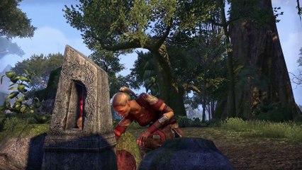 Voici The Elders Scrolls Online : Tamriel Unlimited : Explorer Tamriel de The Elder Scrolls Online